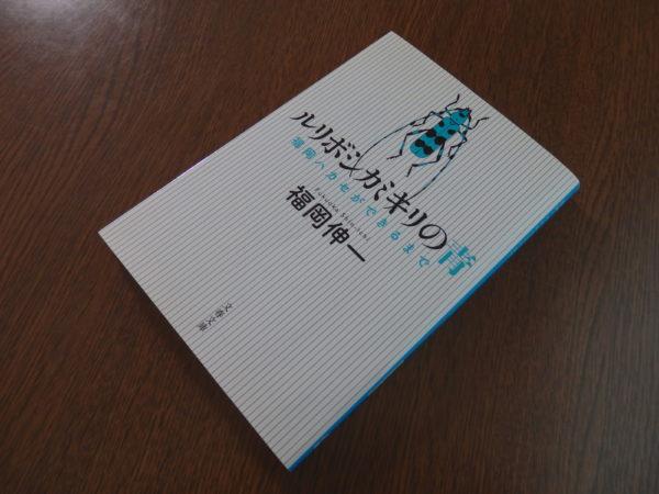 徳島市 ピアノ教室